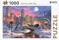 Central Park ride - puzzel 1000 st