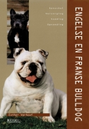 Engelse En Franse Bulldog (128P