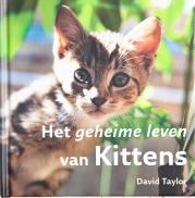 Geheime leven van Kittens