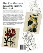 Kew Gardens bloeiende plant kleurbk