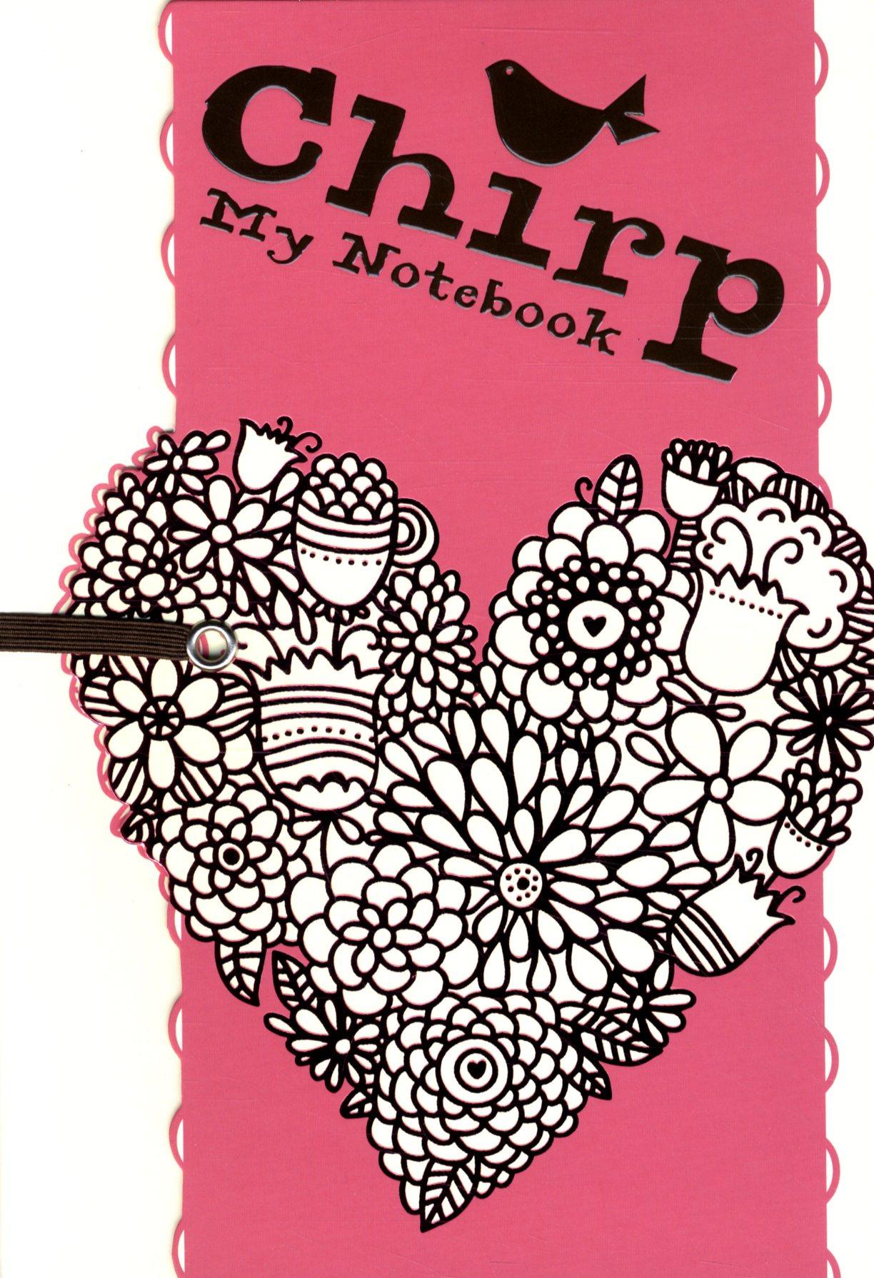 My notebook Chirp