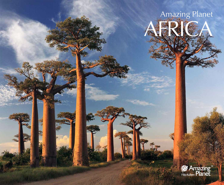 PP Africa