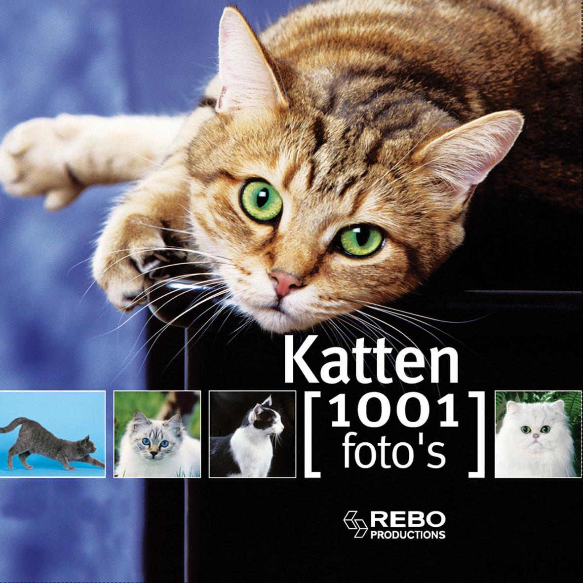 1001 foto's Katten