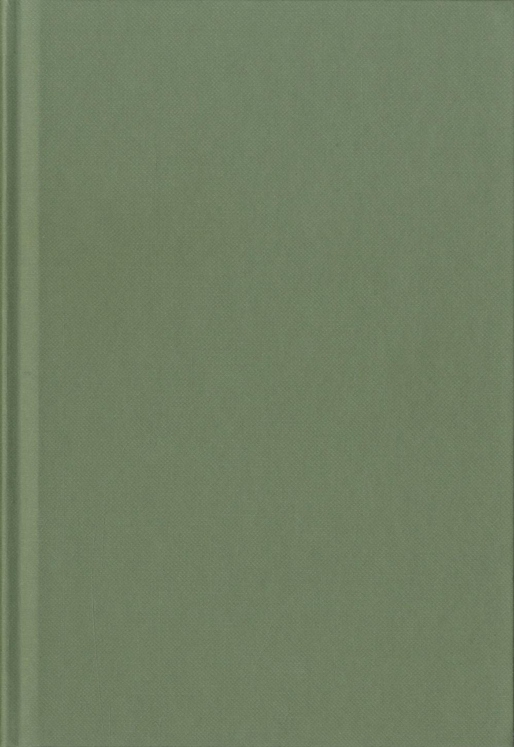 Blanco boek A4 Pistache