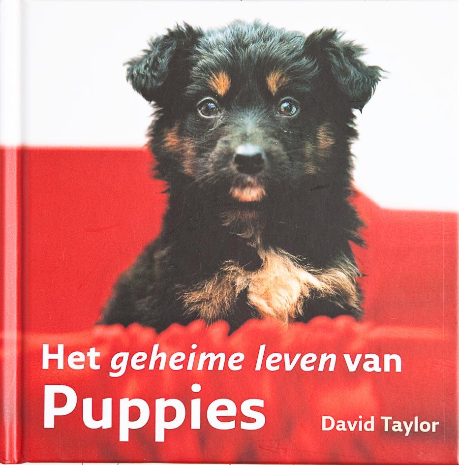 Geheime leven van Puppies