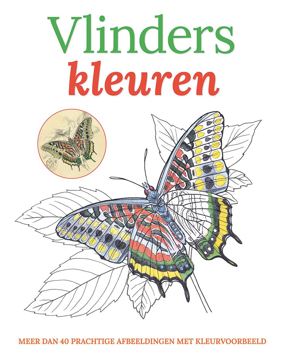 Kleuren Vlinders