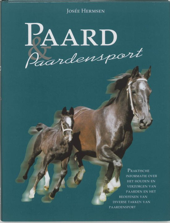 Paard En Paardensport